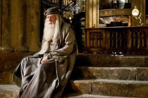 Influenced by Korean dramas, Dumbledore didn't show his feelings for McGonagall.